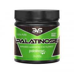 Palatinose 300gr 3VS